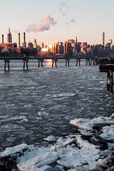 Polar NYC
