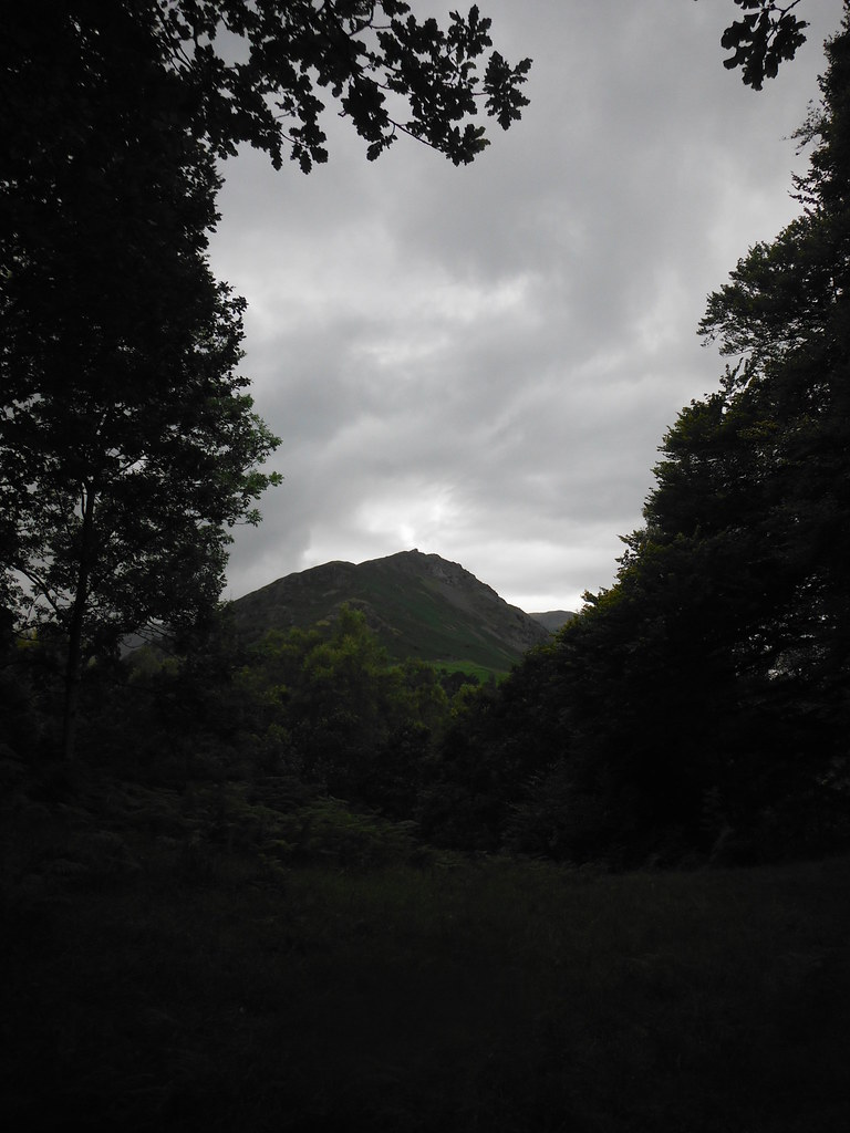 Around Grasmere 1