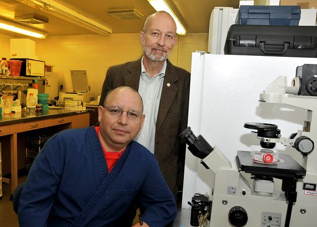 Probiotics Research