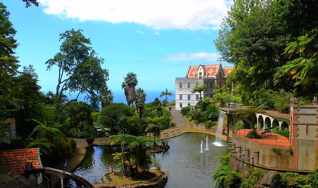 #Madeira #Funchal #Monte #Portugal #JardimBotanico #Island