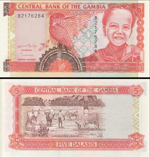 5 Dalasis Gambia 1996, P16a UNC