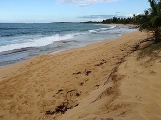 Image of Playa de las Tres Palmitas.