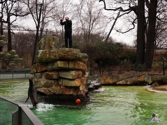 Zoo Berlin 18.03.2016  033