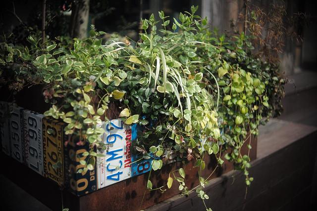 number planter