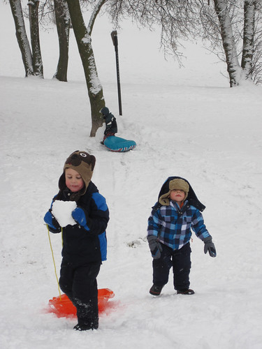 sledding jan8-24