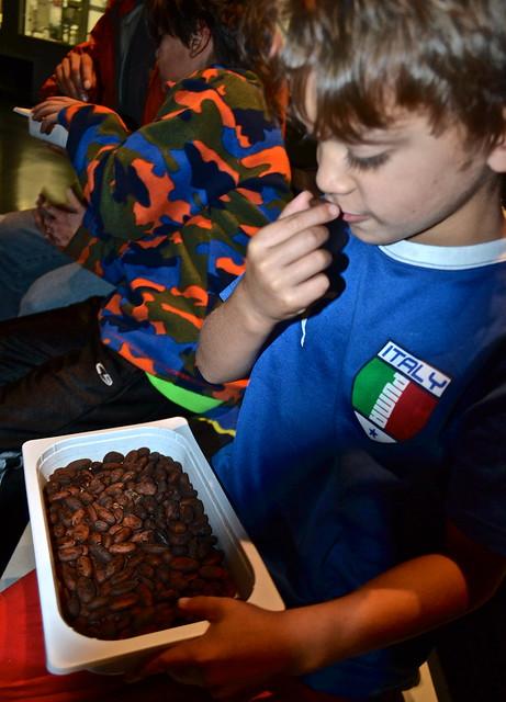chocolate tasting - Simon Coll - Chocolate Tour in Barcelona