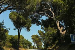 Route Nationale 7 [D7N] - Roquebrune-sur-Argens (France)