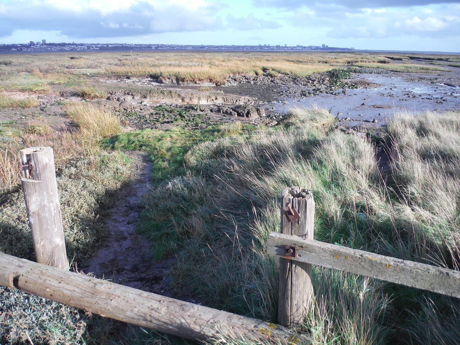 Path towards Canvey Point SWC Walk 258 Benfleet Circular (via Canvey Island)