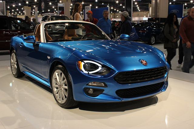 Image of 124 Spider