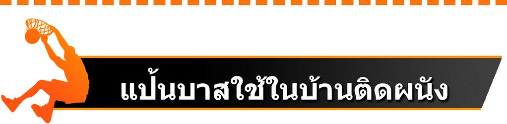Title-II-แป้นบาสใช้ในบ้านติดผนัง