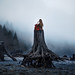 Find Your Roots by Elizabeth Gadd