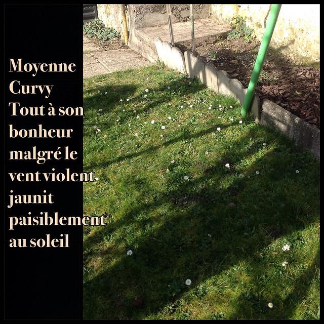 [ famille Mortemiamor ] tranches de vie 3 - Page 68 24253142443_ff9f7345a1_z
