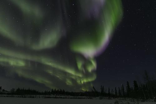 Aurora Feb 8, 2016-9181
