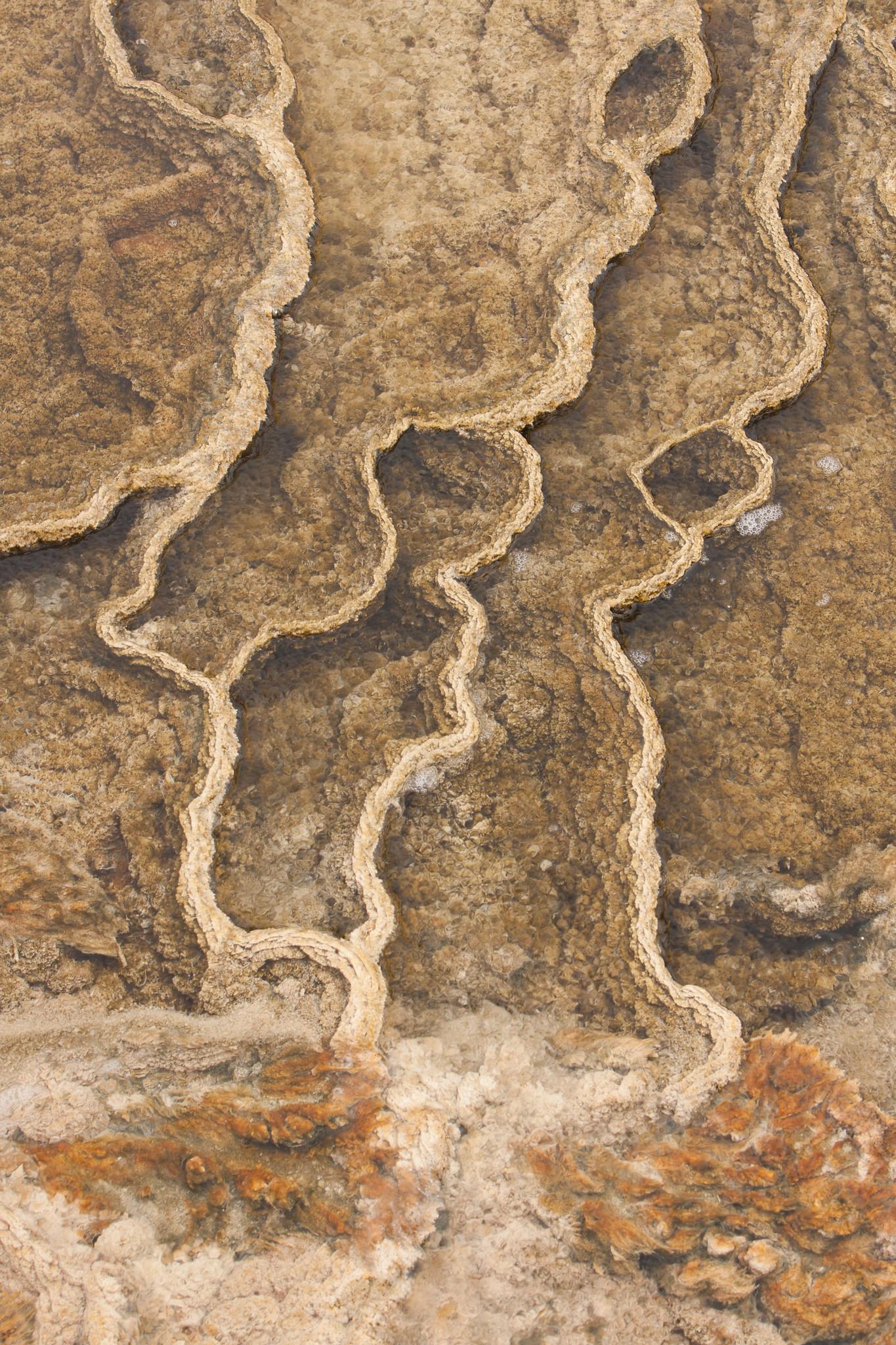 Yellowstone Texture