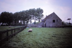 Netherlands    -   May 1989