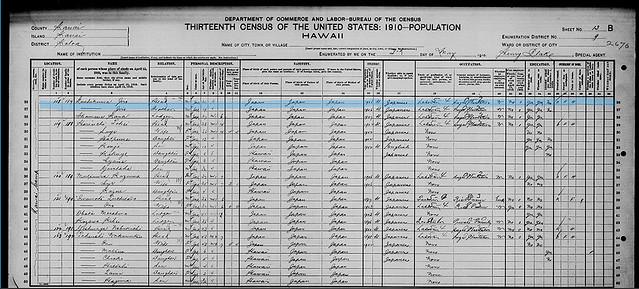 1910 census1