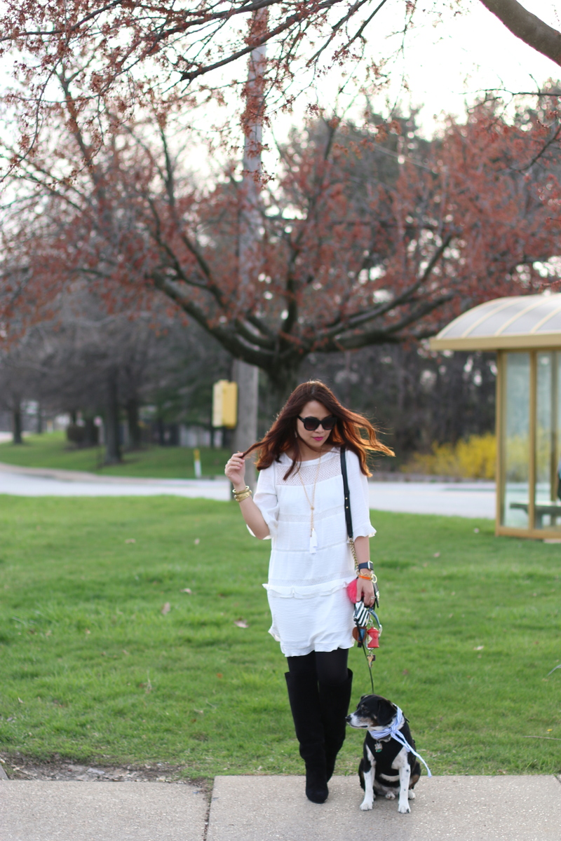 who what wear for target collection, white shift dress, Topshop tall boots, beagle dog