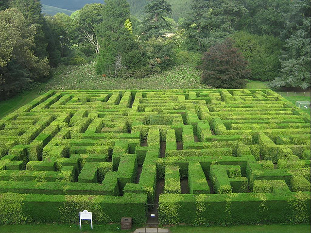 Traquair House Maze - Photo by marsroverdriver