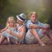 Siblings by Julia Altork