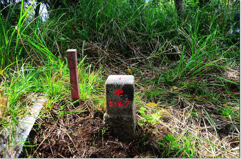 水母丁山三等三角點(# 4147 Elev. 379 m) 1