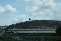 El toro is the symbol of area