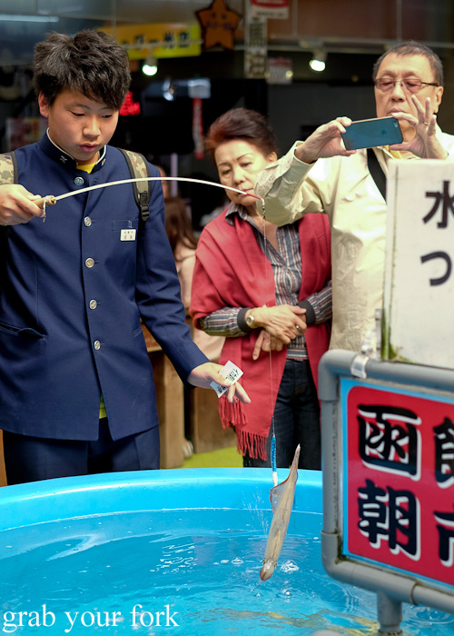 Catching live squid in the fishing game at Hakodate Morning Market, Japan
