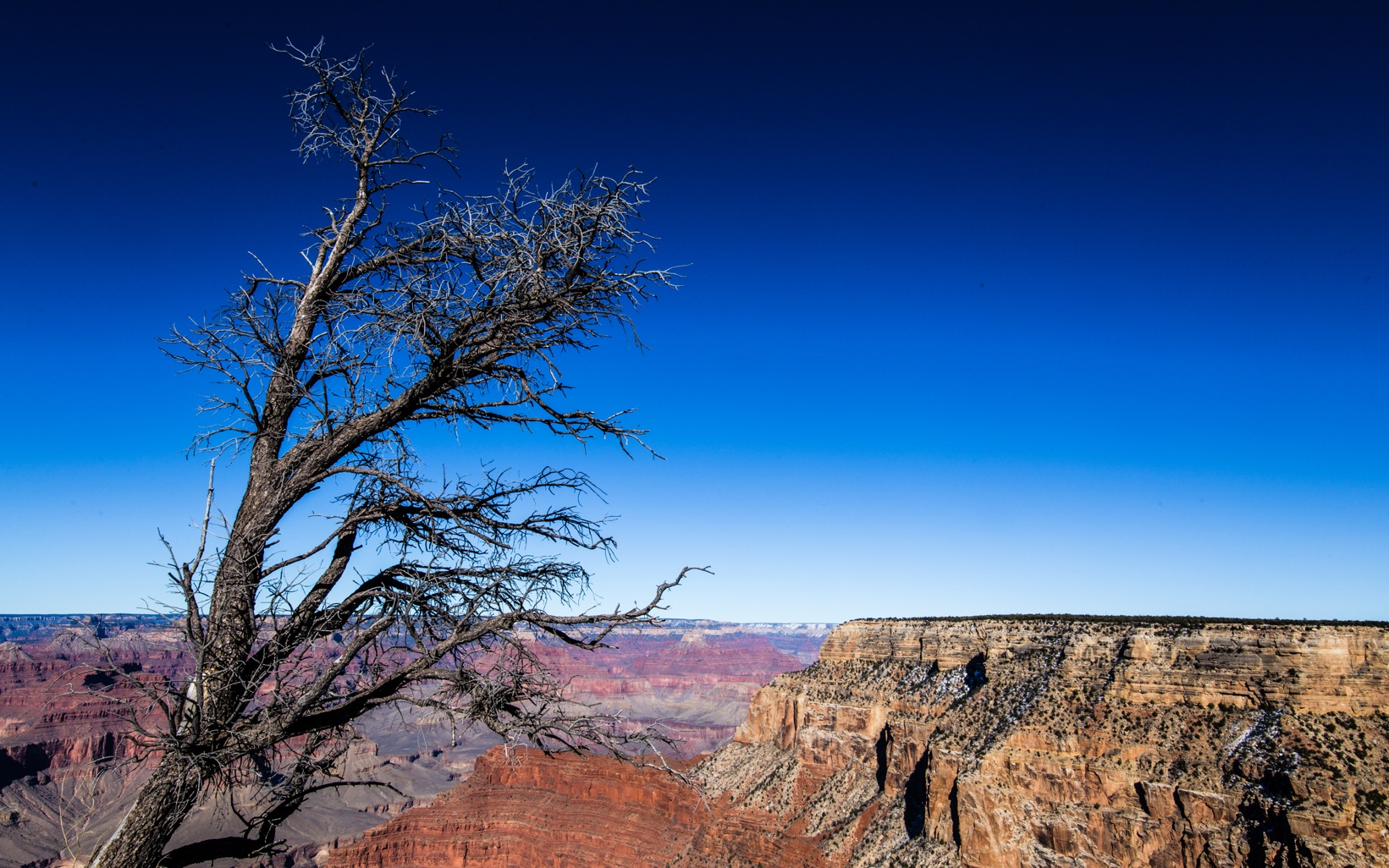 Grand Canyon Winter-1037