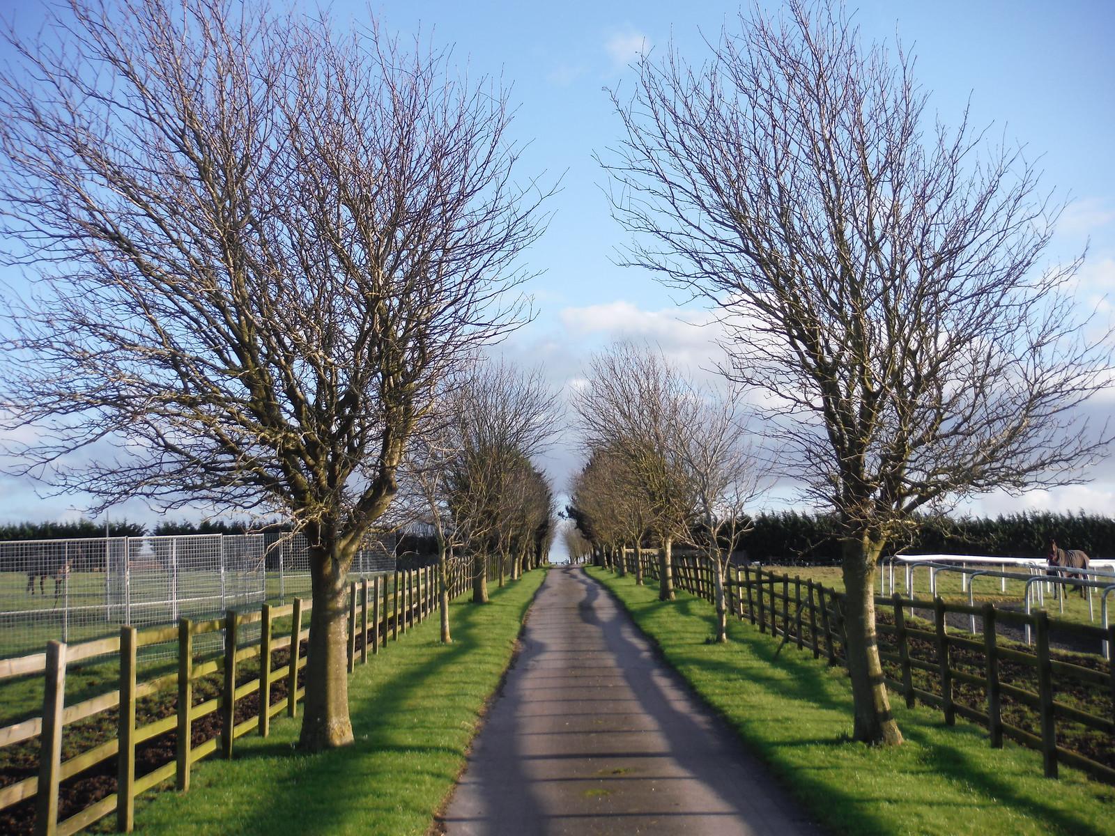 Musk Hill Stud Farm, Driveway SWC Walk 191 Haddenham Circular (via Brill)