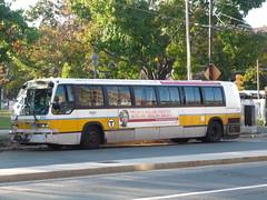 MBTA NovaBus RTS