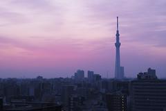 TokyoMorning