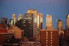 Calgary sunset reflection - gold