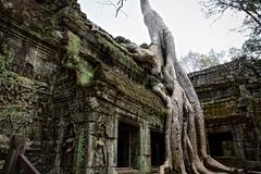 Siem Reap/Angkor, Cambodia