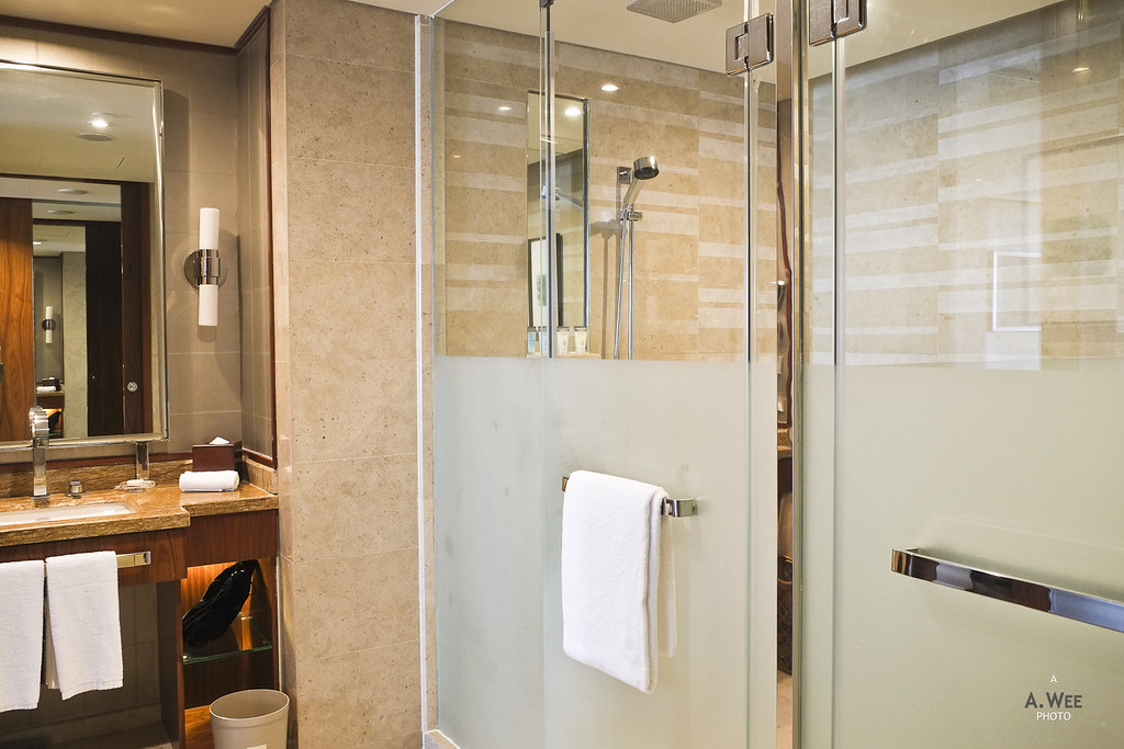Shower and toilet cubicle