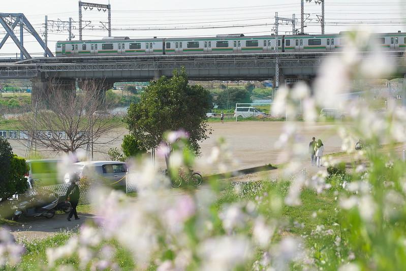 Tokyo Train Story 2016年3月26日
