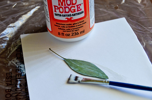 3. Paint one side of leaf with Mod Podge