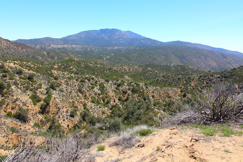 IMG_2787 Pacific Crest Trail