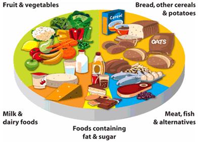 Pregnacare Pregnancy - 10 nguyên tắc cơ bản của việc ăn uống lành mạnh khi mang thai 1