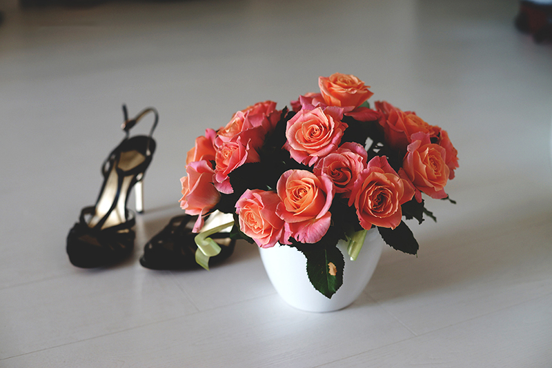rose-and-shoes-photo
