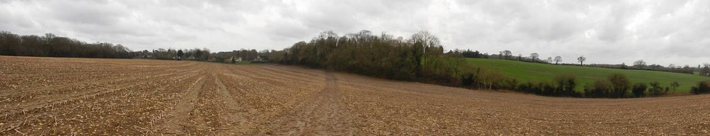 Field above Chaldon Riddlesdown to Coulsdon South