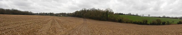 Field above Chaldon