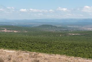 Ausblick om Zuurkop Lookout