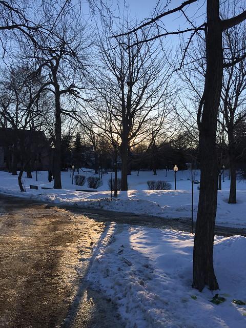 Walk in the Winter