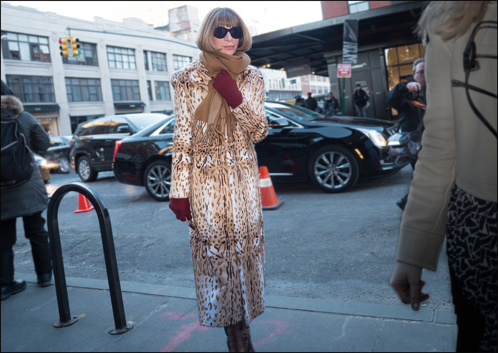 Anna Wintour at DVF on 14th St .  NYFW 2-2016