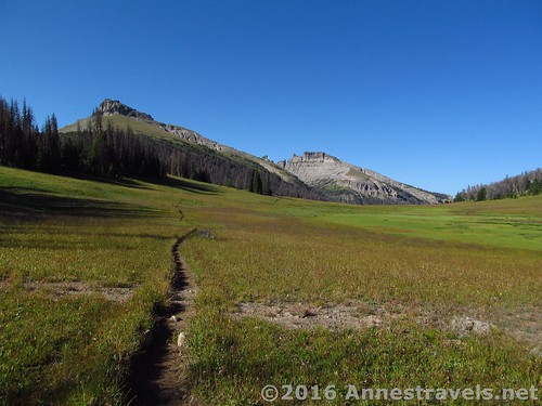 Looking back (west) through Bonneville Pass, Shoshone National Forest, Wyoming
