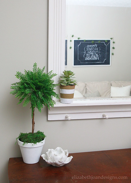 DIY Topiary and Mirror