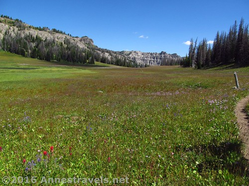 Looking ahead (east) through Bonneville Pass, Shoshone National Forest, Wyoming