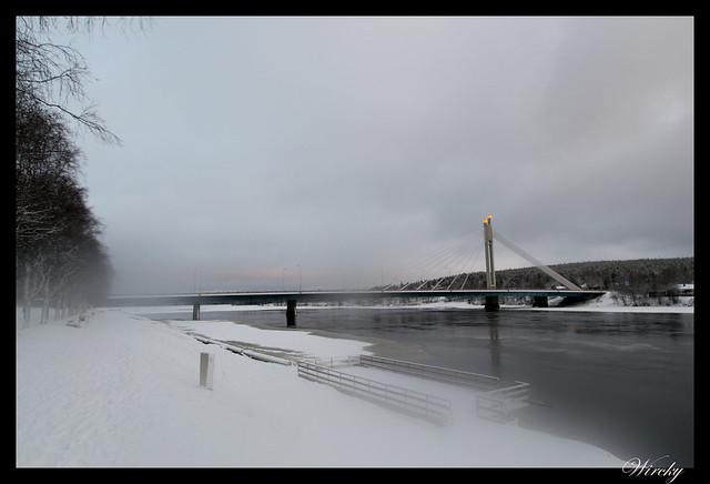 Puente Jätkänkynttilä