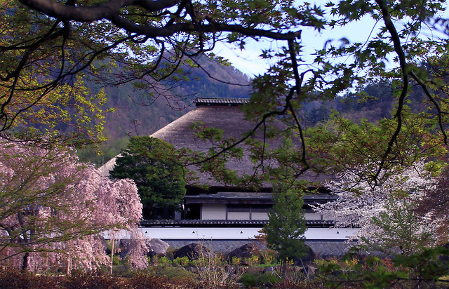 spring in Nagano : 長野県上田市 前山寺 前庭