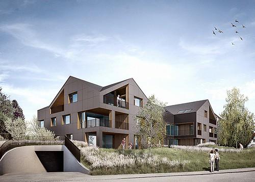 У Швейцарії будують дім, фасади і дах якого будуть покриті сонячними панелями