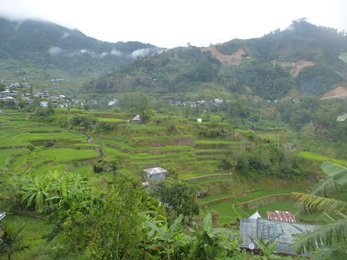 P16-Luzon-Mayoyao-Terrasses (7)